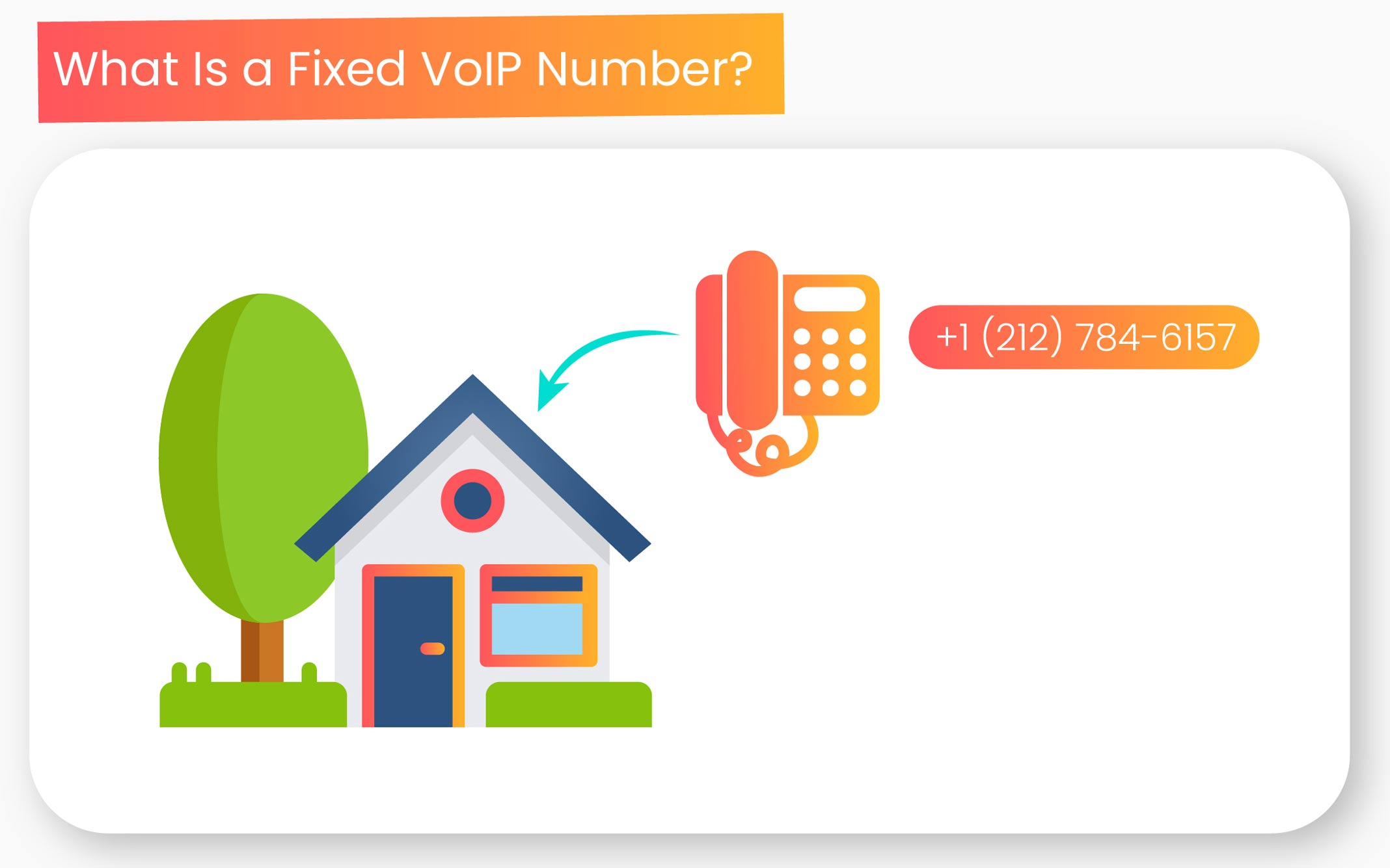 fixed voip number